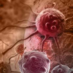 嵌合外泌体为肿瘤免疫治疗带来新思路