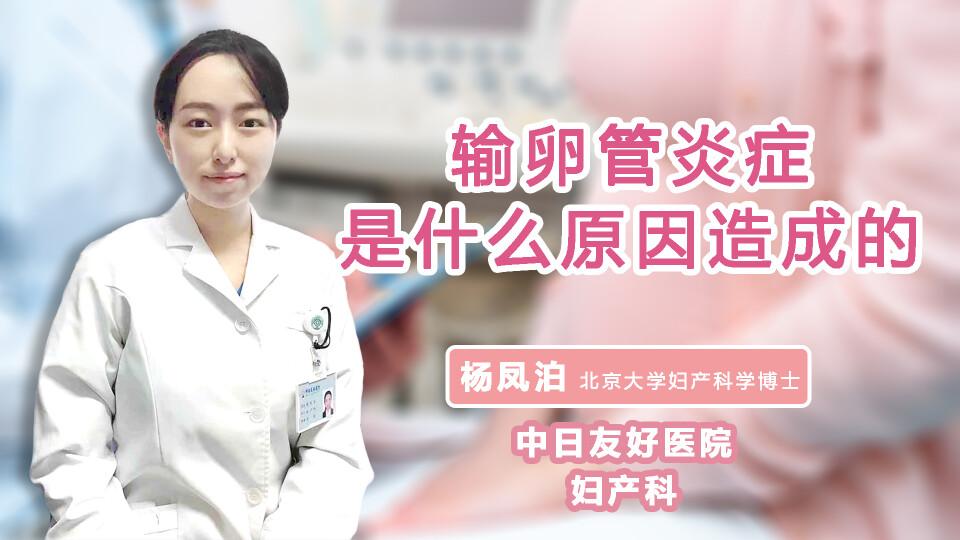 输卵管炎症是什么原因造成的